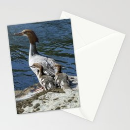 Female Merganser with Her Young Stationery Cards