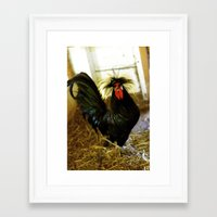 cock Framed Art Prints featuring Cock  by EmmaTeele