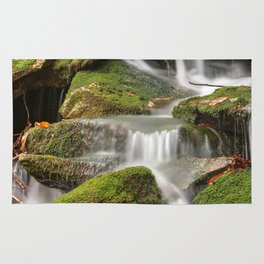 Mossy Rohrbaugh Waterfall Rug