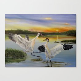 Sunrise Whooping Cranes Canvas Print