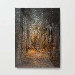 Old pine forest fantasy landscape duotone Metal Print