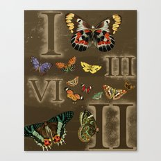 Let's Count Butterflies Canvas Print