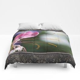 Cleome named Sparkler Pink Comforters