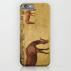 Three Horses Grazing.  Horse Photograph.  Landscape and Nature Photo. Wisconsin iPhone 6s Slim Case