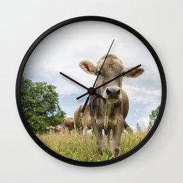 Brown Swiss Heifer Wall Clock