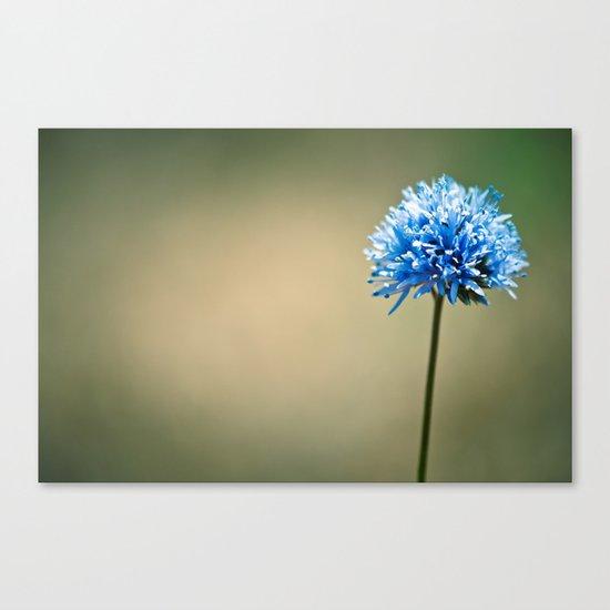 Blue Cotton Canvas Print
