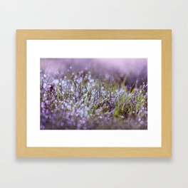 Morning dew on grass Framed Art Print