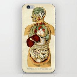 Internal organs of the Human Body iPhone Skin