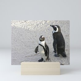 Two African Penguins Boulders Beach, Cape Town, South Africa Mini Art Print