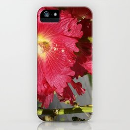 nature stroll iPhone Case