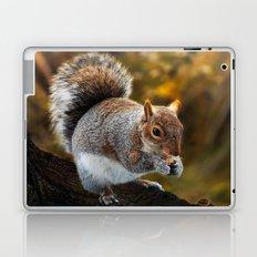 Squirrel nutkin Laptop & iPad Skin