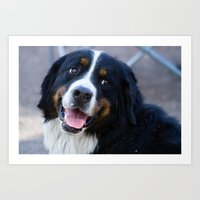 puppy Art Prints featuring Puppy by SachelleJuliaPhotography