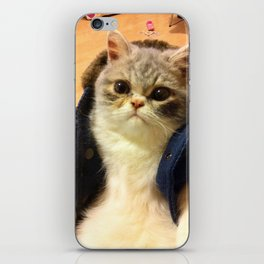 The CAT in the COAT iPhone Skin