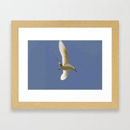 Bird Diving Framed Art Print