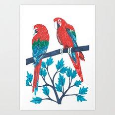 Red Parrots Art Print