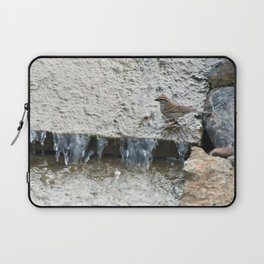 Falling Water (Chipping Sparrow) Laptop Sleeve