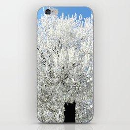 Trees Snow White iPhone Skin