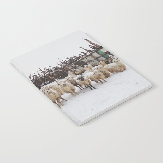 Snowy Sheep Stare Notebook