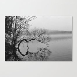A Whisper No. 03 Canvas Print