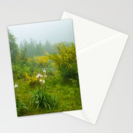 Green forest after raining Stationery Cards