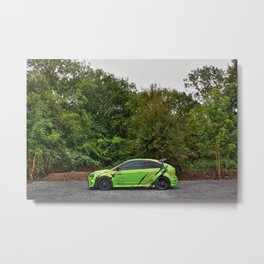 Blending In Metal Print