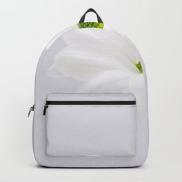 Clean and Simple Backpack