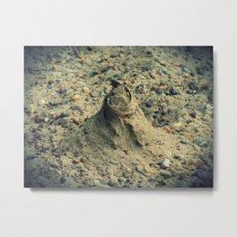 Sand Mound Metal Print