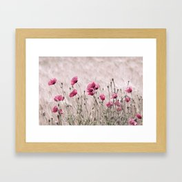 Poppy Pastell Pink Framed Art Print
