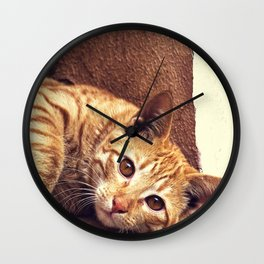 Cat roux Wall Clock