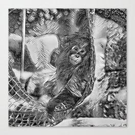 AnimalArtBW_OrangUtan_20170605_by_JAMColorsSpecial Canvas Print