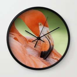Miami Flamingo Wall Clock