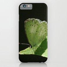 Summer Sun Slim Case iPhone 6s