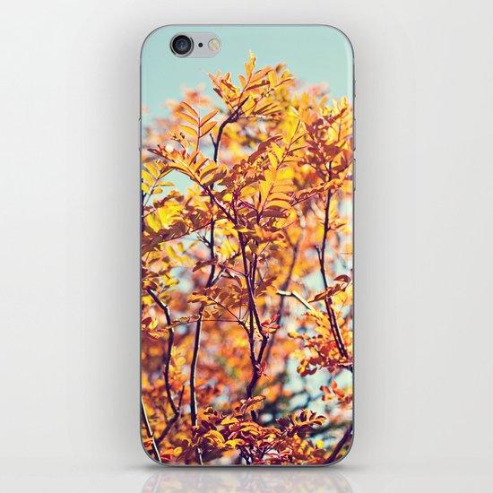 Mountain Fall iPhone & iPod Skin