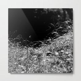 Nature Bornholm Metal Print