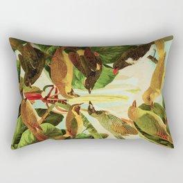 Amazonian Birds by Göldi & Emil August Belem Brazil Colorful Tropical Birds Scientific Illustration Rectangular Pillow