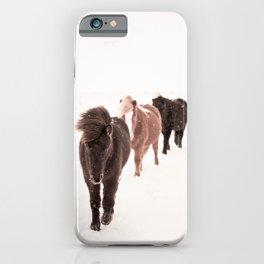 Icelandic Horses Walking iPhone Case