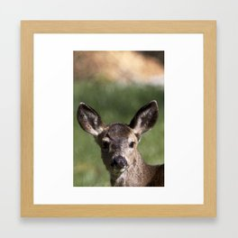 Hello Deer Framed Art Print