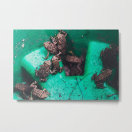 Toad Pile Metal Print