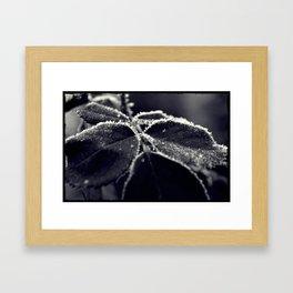 Winter's tale 11 Framed Art Print