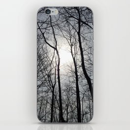 White Sky, Black Trees iPhone Skin