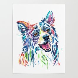Border Collie Painting Poster