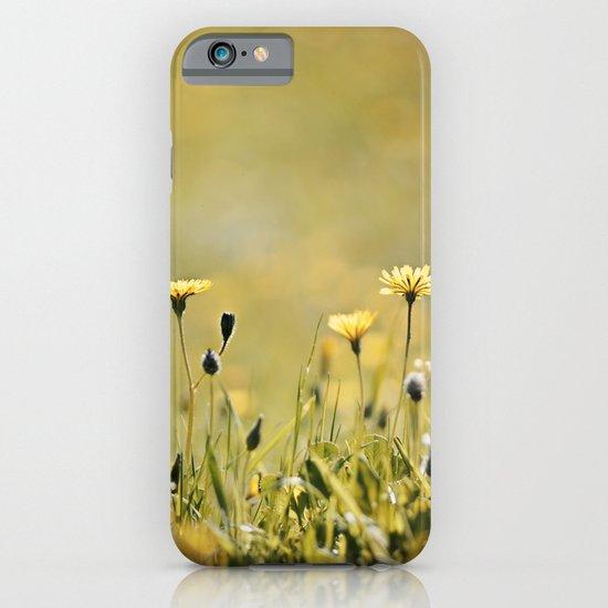 Yellow Wildflowers in the Sun iPhone & iPod Case