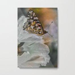 Butterfly in Soft Rain Metal Print