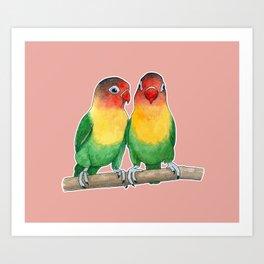 Fischer's lovebirds Art Print