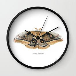 Oculea Silkmoth (Antheraea oculea) Wall Clock