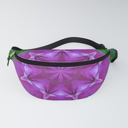 Pattern Of Nature Fanny Pack