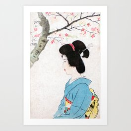 Cherry Blossoms in Bloom Art Print
