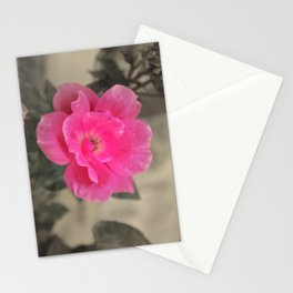 Pink Me Stationery Cards