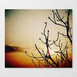 Dawn #2 Canvas Print