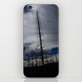 Burned Tree Against Sky iPhone Skin
